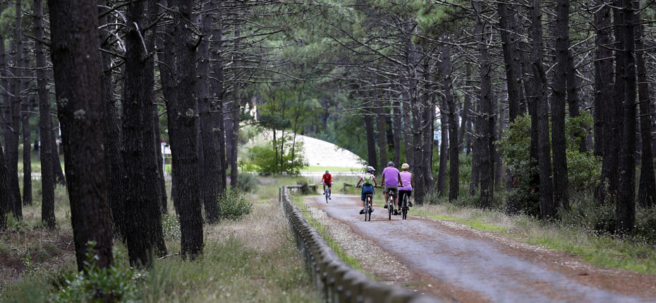pistes-cyclables-montalivet-(c)-Dje-1Moment1Image