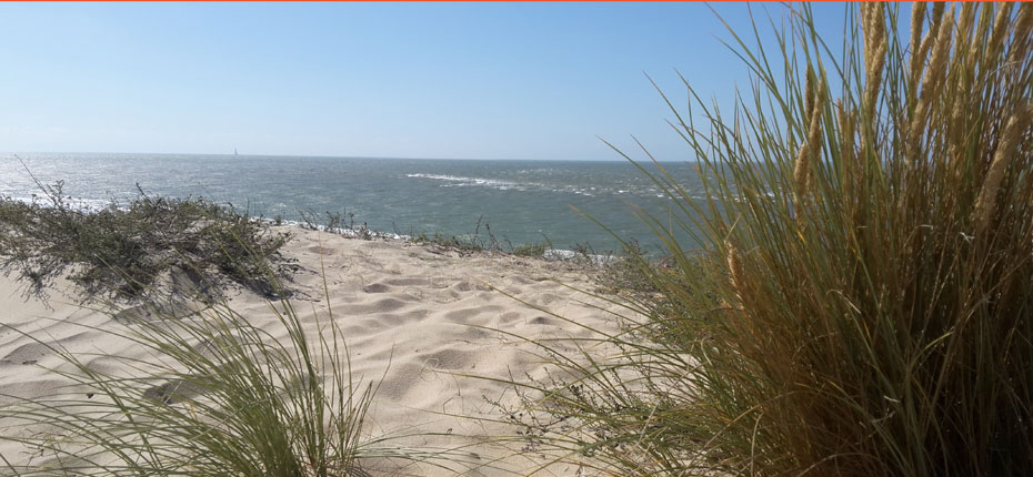 plage-camping-vendays-montalivet