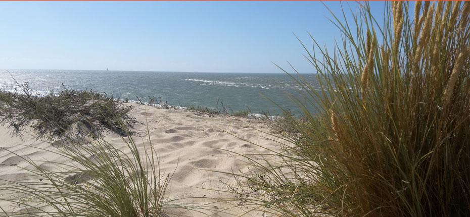 plage-camping-vendays-montalivet